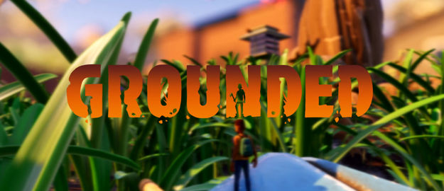 Picture of Grounded Steam Altergift